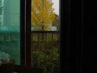 비오는 날의 바깥 풍경